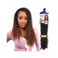 Freetress Synthetic Braid - WATER WAVE BULK 22